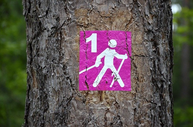 Nordic walking is fantastic for losing weight, and can help burn up a lot of calories.